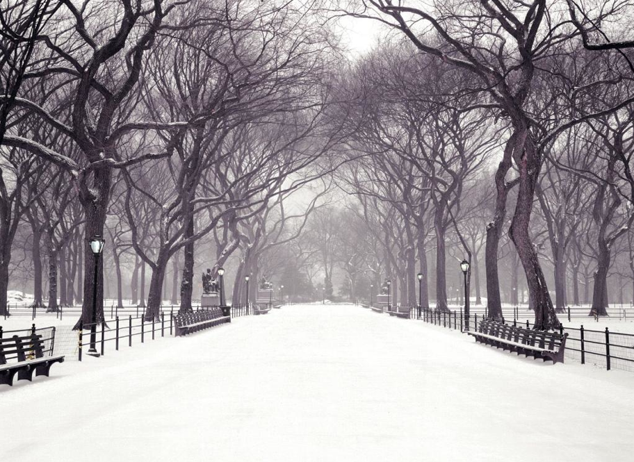 new york in snow