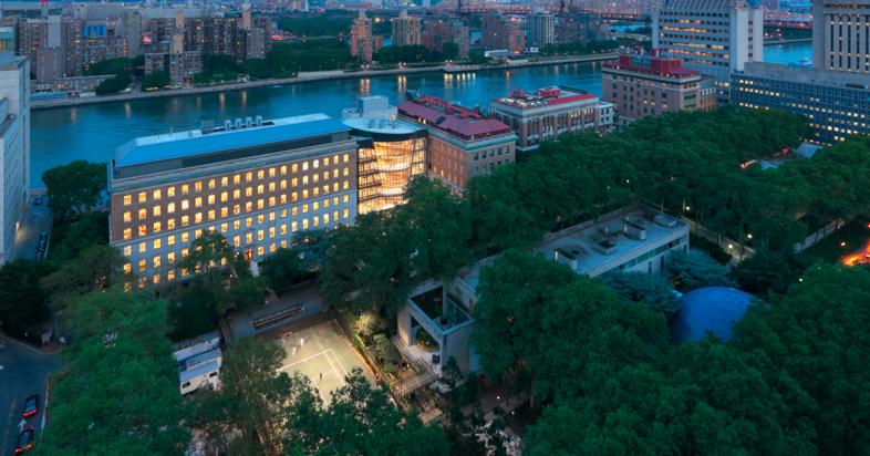 Лучшие Университеты Нью-Йорка 4