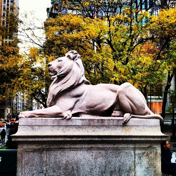 Library's Lion