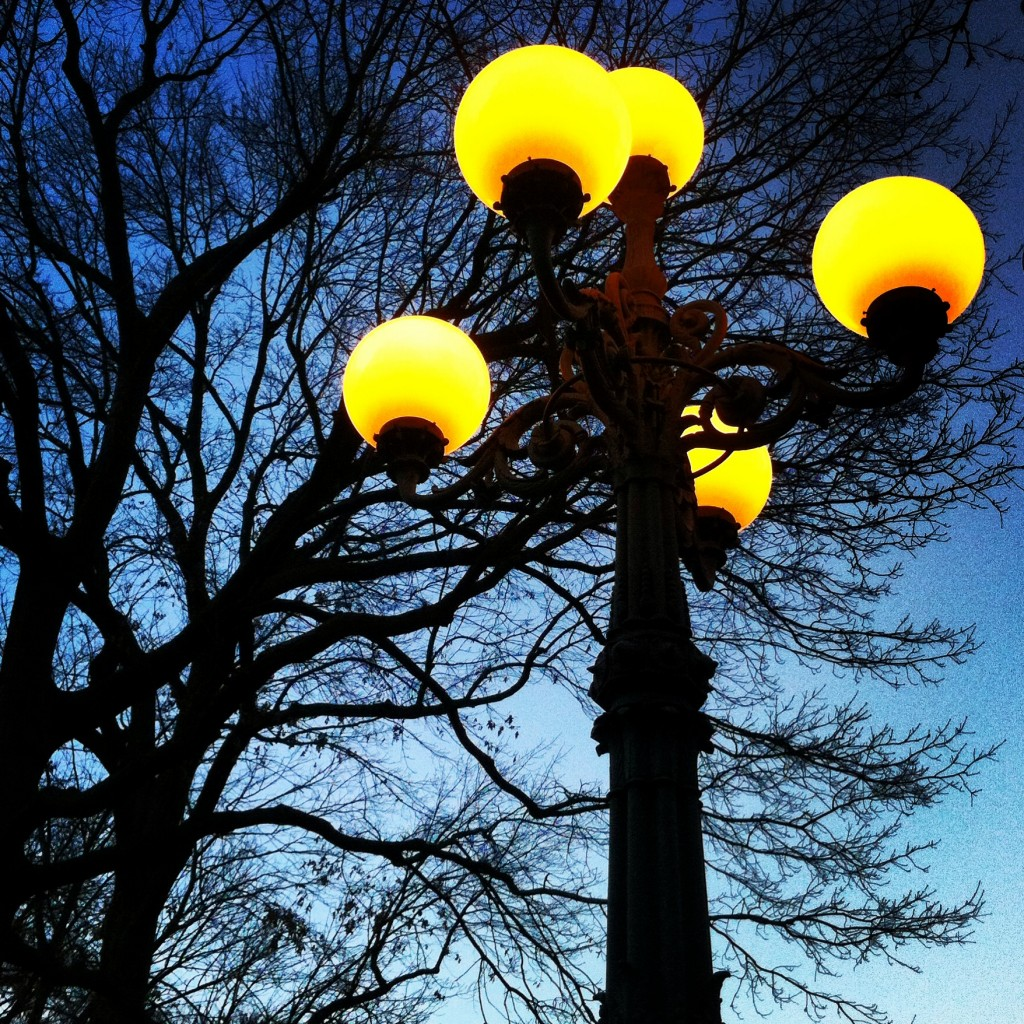 Street_Lamp_In_Central_Park