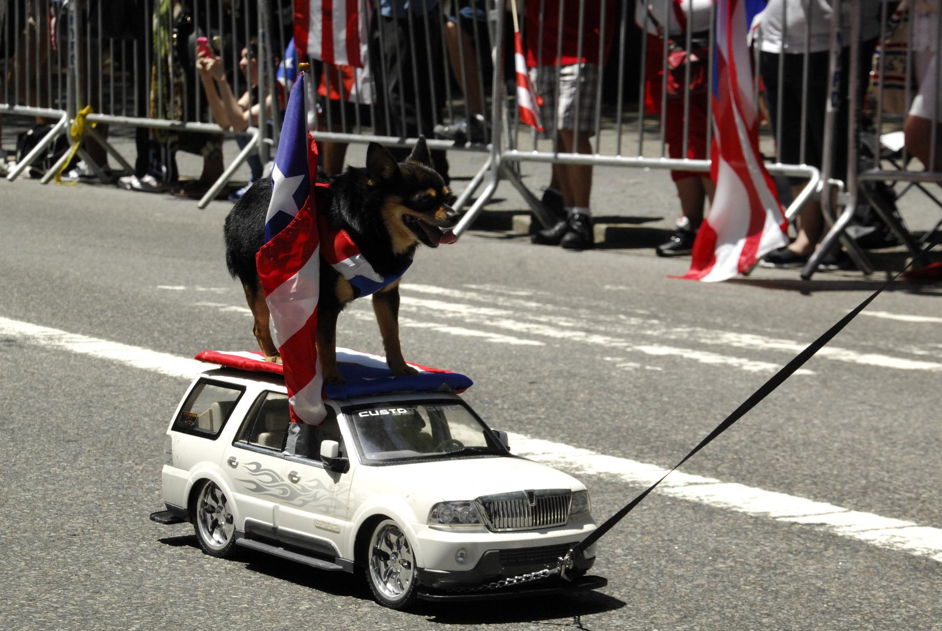 Puerto Rico Day Parade_3