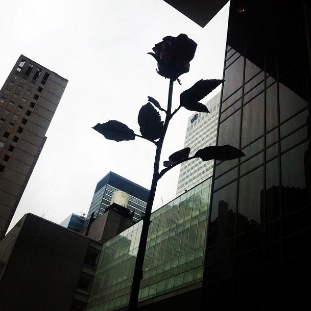 Фотографии Нью-Йорка_6