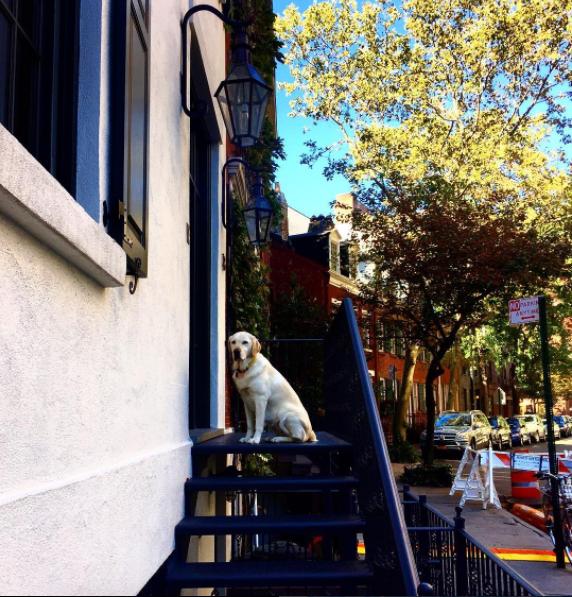 Фото_Нью-Йорк-4