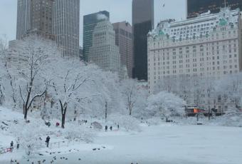 Снег в Нью-Йорке 8