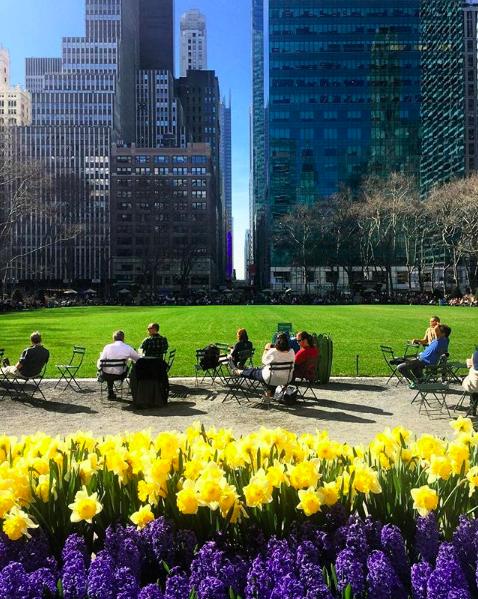 Самые фотогеничные места Нью-Йорка 3